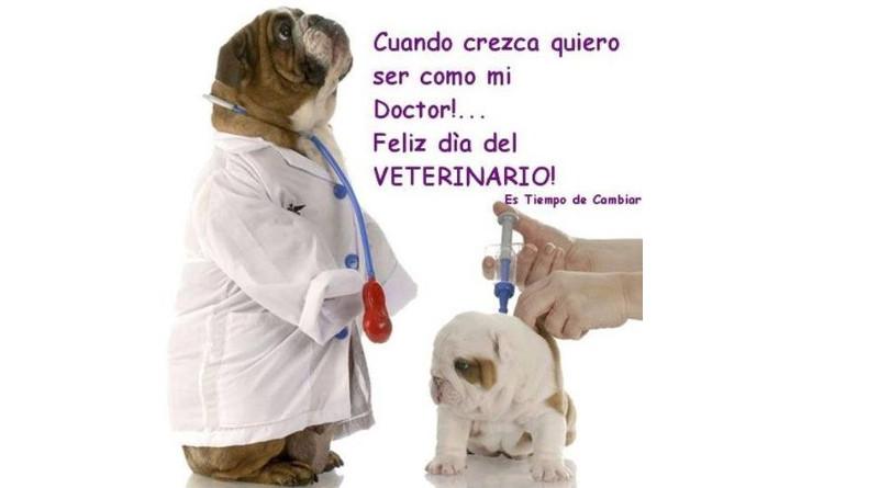 ¡APROA felicita a los médicos veterinarios en su día!