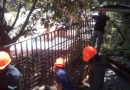 K-SAR del Grupo de Rescate Metropolitano realiza poda de árboles en APROA Cotiza