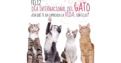 APROA y Misión Nevado celebramos el mes del gato